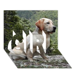 Yellow Lab Sitting GIRL 3D Greeting Card (7x5)