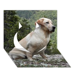 Yellow Lab Sitting Heart 3D Greeting Card (7x5)
