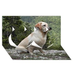 Yellow Lab Sitting Twin Hearts 3D Greeting Card (8x4)
