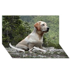 Yellow Lab Sitting Twin Heart Bottom 3D Greeting Card (8x4)