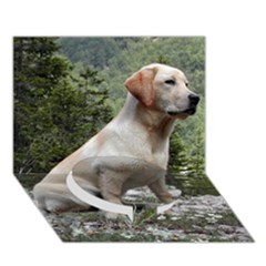 Yellow Lab Sitting Circle Bottom 3D Greeting Card (7x5)