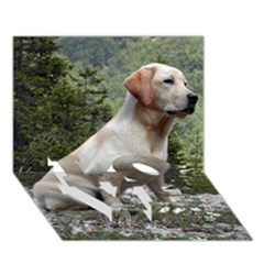 Yellow Lab Sitting LOVE Bottom 3D Greeting Card (7x5)