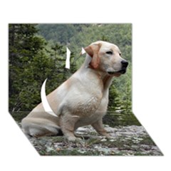 Yellow Lab Sitting Apple 3D Greeting Card (7x5)