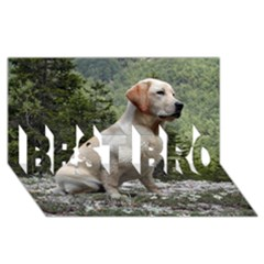 Yellow Lab Sitting BEST BRO 3D Greeting Card (8x4)