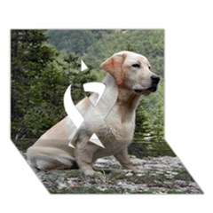Yellow Lab Sitting Ribbon 3D Greeting Card (7x5)