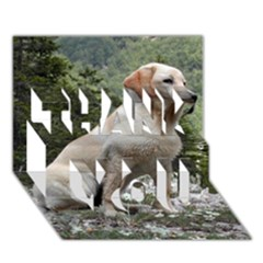 Yellow Lab Sitting THANK YOU 3D Greeting Card (7x5)