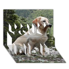 Yellow Lab Sitting You Did It 3D Greeting Card (7x5)