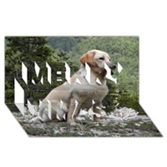 Yellow Lab Sitting Merry Xmas 3D Greeting Card (8x4)