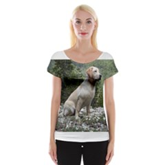 Yellow Lab Sitting Women s Cap Sleeve Top