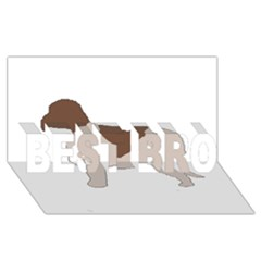 Lagotto Romagnolo Silo Color BEST BRO 3D Greeting Card (8x4)