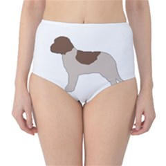 Lagotto Romagnolo Silo Color High-Waist Bikini Bottoms