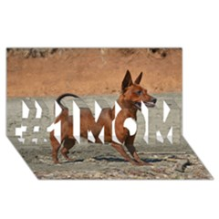 Min Pin Full #1 MOM 3D Greeting Cards (8x4)
