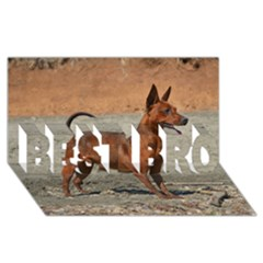 Min Pin Full BEST BRO 3D Greeting Card (8x4)