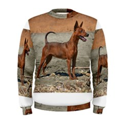 Min Pin Full Men s Sweatshirts