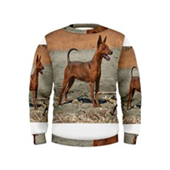 Min Pin Full Boys  Sweatshirts
