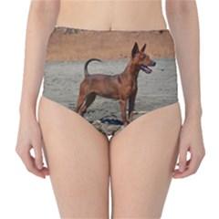 Min Pin Full High-Waist Bikini Bottoms