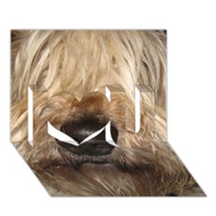Wheaten I Love You 3D Greeting Card (7x5)