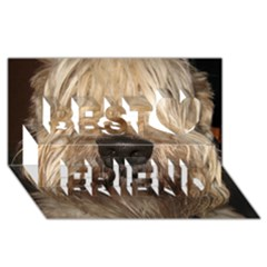 Wheaten Best Friends 3D Greeting Card (8x4)