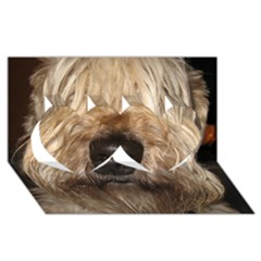 Wheaten Twin Hearts 3D Greeting Card (8x4)