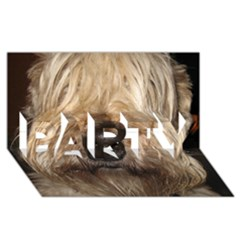 Wheaten PARTY 3D Greeting Card (8x4)