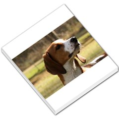 Treeing Walker Coonhound Small Memo Pads