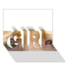 Vizsla Eyes GIRL 3D Greeting Card (7x5)