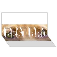 Vizsla Eyes BEST BRO 3D Greeting Card (8x4)