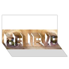 Vizsla Eyes BELIEVE 3D Greeting Card (8x4)