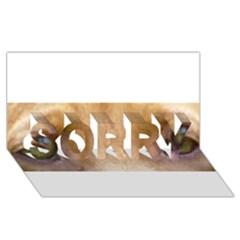 Vizsla Eyes SORRY 3D Greeting Card (8x4)
