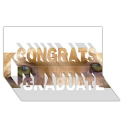 Vizsla Eyes Congrats Graduate 3D Greeting Card (8x4)