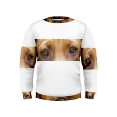Vizsla Eyes Boys  Sweatshirts