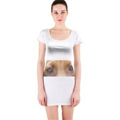 Vizsla Eyes Short Sleeve Bodycon Dresses