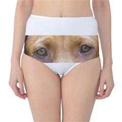 Vizsla Eyes High-Waist Bikini Bottoms