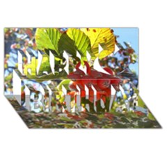 Rowan Happy Birthday 3d Greeting Card (8x4)