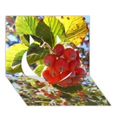 Rowan Heart 3D Greeting Card (7x5)