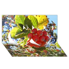 Rowan Twin Hearts 3d Greeting Card (8x4)
