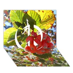 Rowan Peace Sign 3d Greeting Card (7x5)