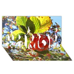 Rowan #1 Mom 3d Greeting Cards (8x4)
