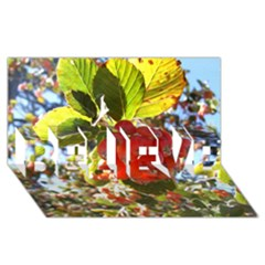 Rowan Believe 3d Greeting Card (8x4)