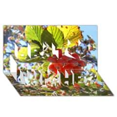 Rowan Best Wish 3D Greeting Card (8x4)