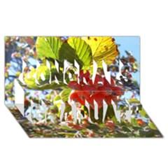 Rowan Congrats Graduate 3D Greeting Card (8x4)