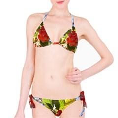 Rowan Bikini Set
