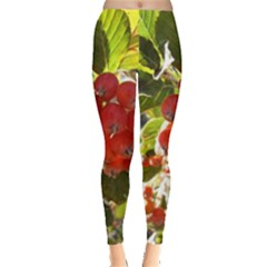 Rowan Women s Leggings