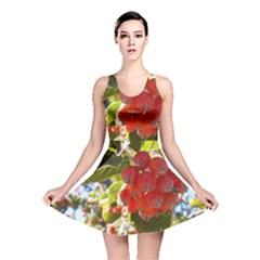 Rowan Reversible Skater Dresses