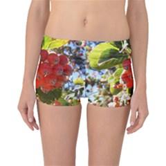 Rowan Boyleg Bikini Bottoms