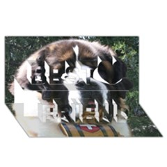 St Bernard Best Friends 3D Greeting Card (8x4)