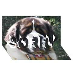 St Bernard SORRY 3D Greeting Card (8x4)