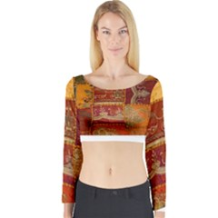 India Print Realism Fabric Art Long Sleeve Crop Top