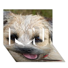 Border Terrier I Love You 3D Greeting Card (7x5)