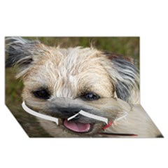 Border Terrier Twin Heart Bottom 3D Greeting Card (8x4)